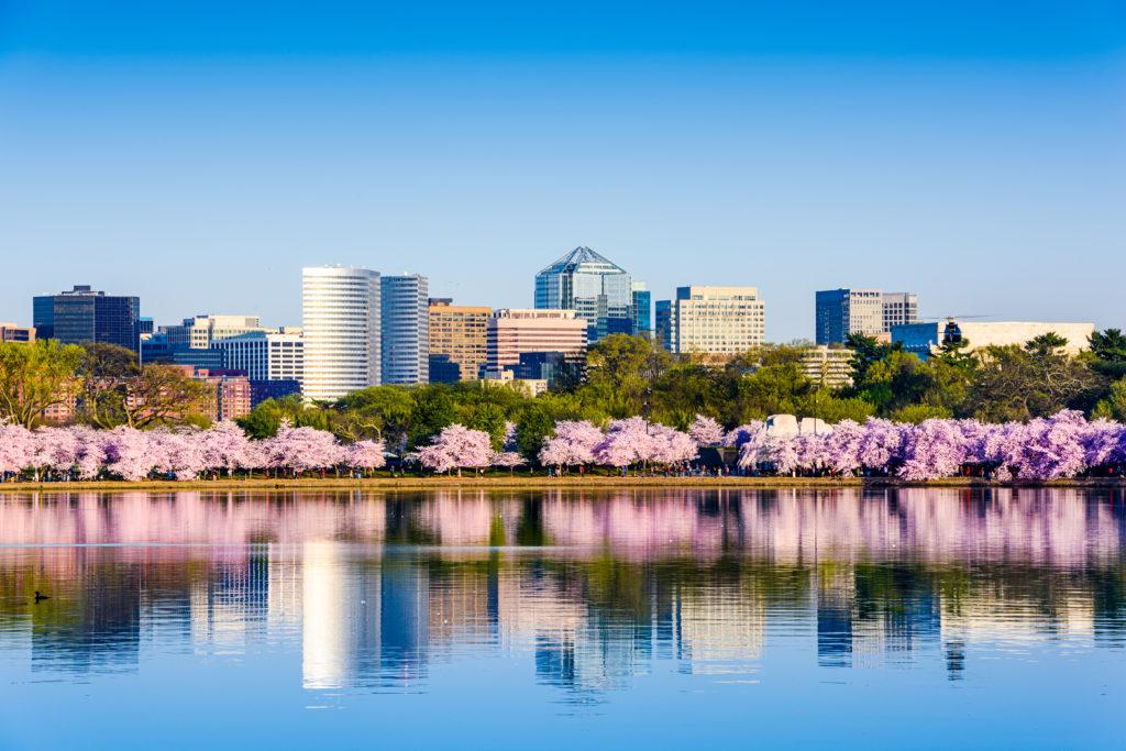 Washington D.C. Cityscape